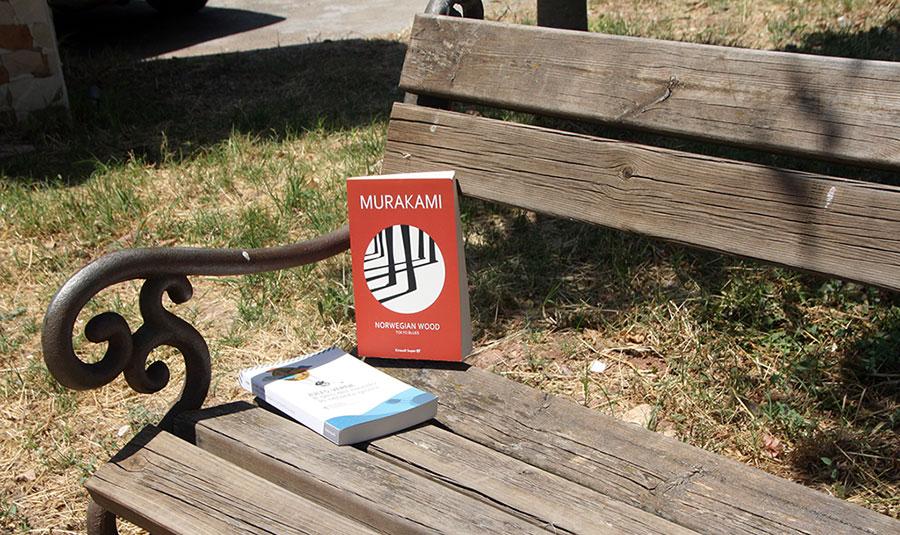 libri su una panchina al parco
