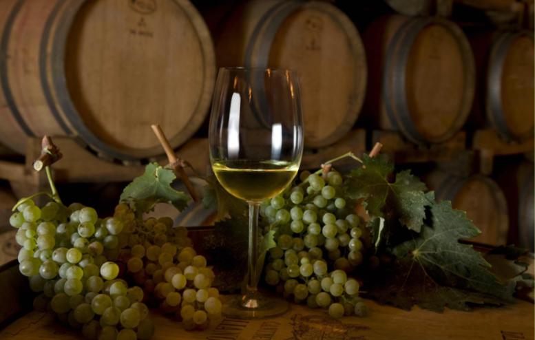 bicchiere di vino vermentino bianco con grappoli d'uva e botti sullo sfondo